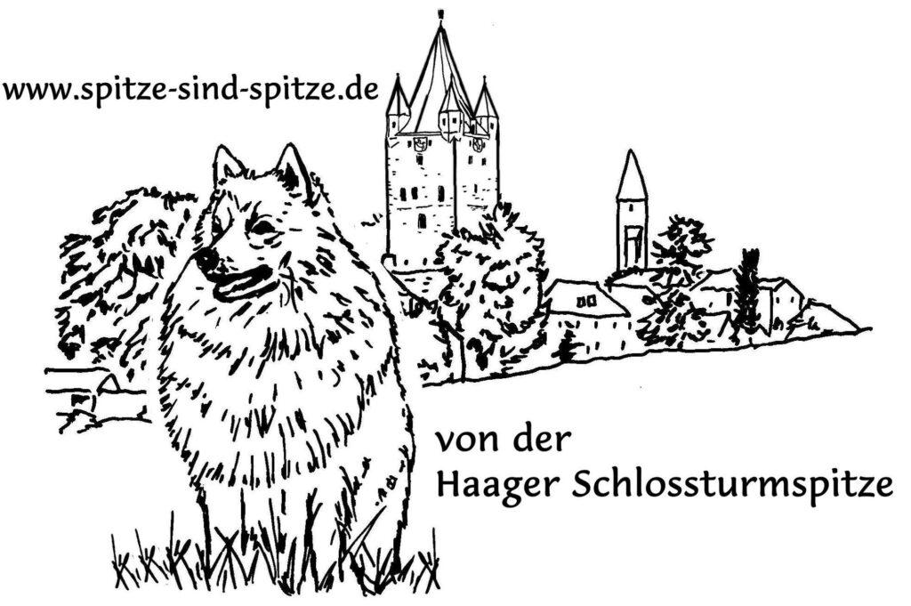 von der Haager Schloßturmspitze